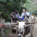 Ox cart to Tharu village