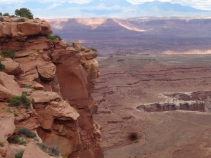 Overlooking canyons, spectacular rock formations and Colorado River at work.