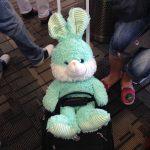 "TSA and teens: ""Put the bunny on the belt!"""
